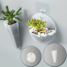 Creative Wall Mounted Acrylic Vase Wall Hanging Planter Plant Flower Pot