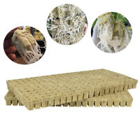 50/100PC Rockwool Cubes Rock Soilless Cultivation Planting Hydroponic Grow Media