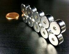 "D1//2/""x1//4/""idx1//8/"" Neodymium Ring Magnets 12pcs of N52 Diametrically magnetized"