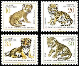 EBS East Germany DDR 1978 Leipzig Zoo: Wild Cat KITTENS! 2322-2325 MNH**