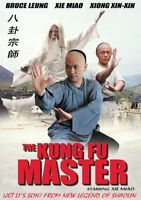 THE KUNG FU MASTER - Hong Kong RARE Kung Fu Martial Arts Action movie - NEW DVD
