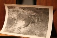 WWII ca.1944 Photo 3.25x4.5 Japanese Ruins Bomb War Damage Dead Soldier