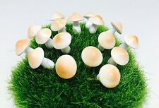 Miniature Dollhouse Fairy Garden Accessories 20 Tiny Brown Mushroom