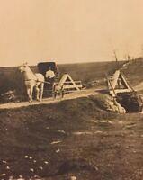 Postcard, RPPC, Horse And Carriage Alberta Canada Vintage P25