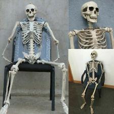 Kunststoff gegliederten menschliches Skelett Dekoration Halloween Party Prop MM