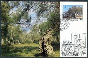 2065b - Yugoslavia 1984 - Olive Tree - Mirovica - Bar - Montenegro - Flora - MC