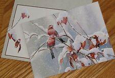 Susan Bourdet Art - Blizzard House Finches Birds - vtg Lang Christmas Cards 5ct