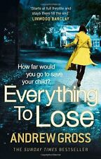 ANDREW GROSS __ EVERYTHING TO LOSE ___ BRAND NEW __ FREEPOST UK