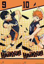 Haikyu!! Shoyo & Kageyama 1/1 Size Special Edition Wall Scroll