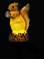 A Solar Squirrel A  Fantastic Solar Decoration Brighten Up Your Garden Today