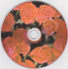 Matrimonio; VERBATIM Wide SILVER pezzo grezzo 700 MB, stampati con rose rosse, video