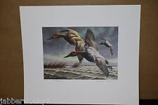 1982 - 1983 Federal Duck Stamp Print - Print Signed and Numbered - Stamp - Mint