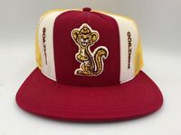 Vintage Deadstock Minnesota Golden Gophers AJD Stripe Snapback Trucker Hat RARE