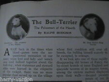 Bull Terrier Dogs Dog Show Champions Rare Old Article 1910 Gully Pimms Gannaway