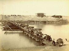 c1870s, Zangaki, CAMELS crossing bridge, EGYPT, nice mounted ALBUMEN photograph