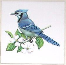 """Blue Jay Song Bird Ceramic Tile 4.25"""" x 4.25""""  Kiln Fired Back Splash Decor"""