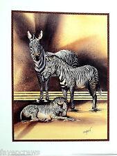 ZEBRA PICTURE SAFARI ANIMAL PRINT 16X20
