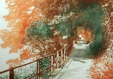 """Irmgard """"Shadows"""" Hand Signed Color Art Etching forest bridge trees OBO"""