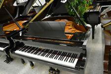 Schiller Performance 5'3 Grand Piano Black Polish