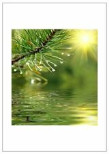 NW Pitney Ink Evergreen in Yellow Blank Greeting Card, 5 x 7 Inches