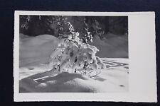 Carte postale ancienne CPA Paysage enneigé