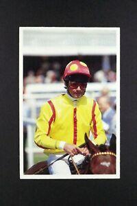 1 x card BBC Question of Sport 1991 Walter Swinburn Jokey Horse Racing