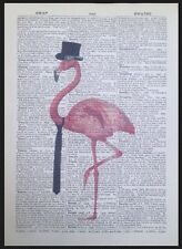 Vintage Pink Flamingo Dictionary Print Page Wall Art Picture Quirky Hipster