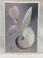 Vtg UNITED AIRLINES Flight Menu Chicago illinois Seashell Motif HELEN de WERD