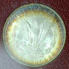 1887 Morgan Dollar Rainbow Rim Toning in Burgundy Paramount Holder