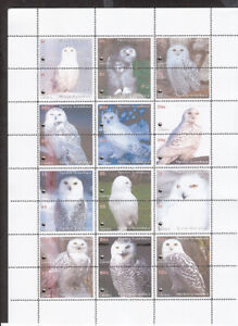 OWLS  - 144!!!!  stamps FULL SET  private issue LIMITED EDITION!!