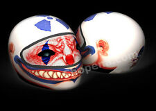 Clown Motorcycle Helmet Cover AND Visor Sticker Decal Circus Jester Street NEW