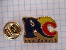 PINS RARE RADIO CAMBRILS TARRAGONA CATALONIA CATALUNYA CATALUNY SPAIN m1