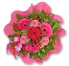 Pflanzen, Sämereien & Zwiebeln Blumengeschenk Geschenkidee Für Liebende Frauen Männer Duft Stundenblume Samen