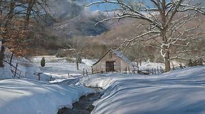 """""""Cane Creek"""" Phillip Philbeck Limited Edition Giclee Print on Paper"""