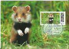 Offizielle Maximumkarte DP Ausgabe 04/2021 - Junge Wildtiere -Feldhamster -