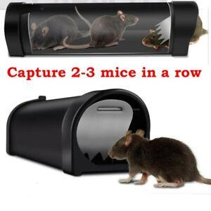Durable Piège à rats Ratière Souris Rongeurs Cage Nuisibles Trappe Mice