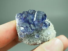 Blue Purple Fluorite & Quartz on the matrix,Glass luster and transparency,YS291