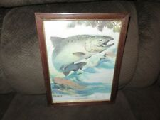 *Vintage* 1970's FRED SWENEY Wildlife 3-D EMBOSSED Print CHINOOK SALMON Fish NOS