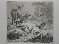 F. Brauer n. Nicolaes Berchem Pferd Kuh Schaf Esel horse cow donkey vache sheep