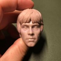 High Quality Blank 1/6 scale Luke Skywalker Head Sculpt Star Wars male Unpainted