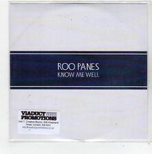 (FL806) Roo Panes, Know Me Well - 2010 DJ CD