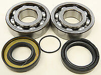 NEW ALL BALLS  24-1066 - Crank Bearing and Seal Kit YAMAHA DT IT YZ FREE SHIP