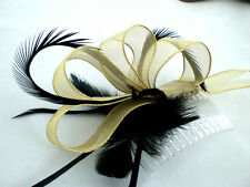 New Gold and black Wedding Fascinator