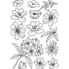 Crafty Individuals Rubber Stamps - Flower Heads 2 - Flowers, Cherry Blossom