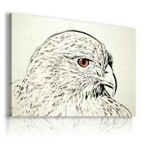 COLORFUL EAGLE MODERN ABSTRACT ANIMAL CANVAS WALL ART PICTURE WS222 X