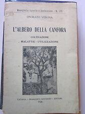 Verona - L'albero della canfora. Coltivazione, malattie, utilizzazione.