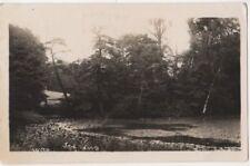 Ken Wood, Hampstead, London 1925 RP Postcard B791