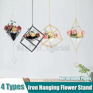 Iron Creative Hanging Flower Stand Ins Shop Ceiling Top Decorative Floral