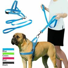 Reflective Pet Dog Harness Leash Set Padded Breathable Solid Mesh Walking Lead