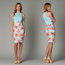Baby Blue Scoop Neckline Fish Net Top Side Cutout Design Fitted Dress/ Medium